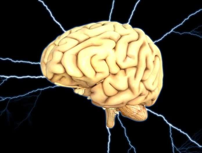 esclerose múltipla, tratamento, cérebro