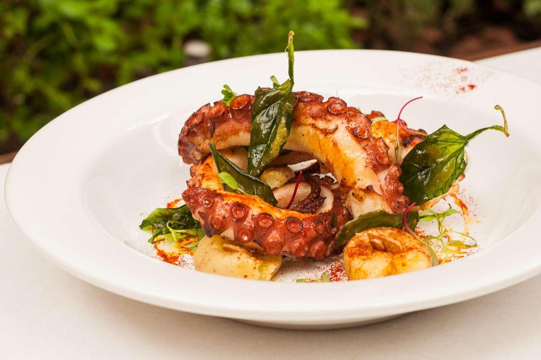 Charmoso bistrô oferece melhor gastronomia contemporânea
