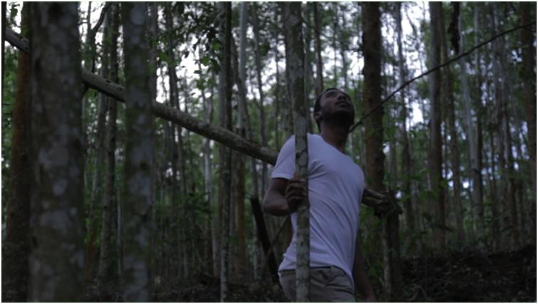 Curta metragem Mecânica da Sombra na Casa Plana