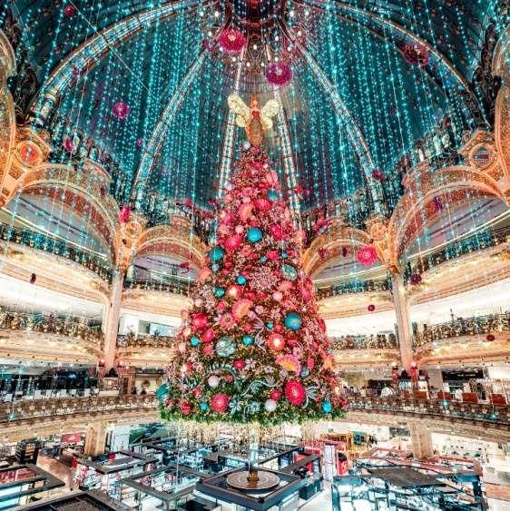 Galeries Lafayette e a doçura do mel neste Natal