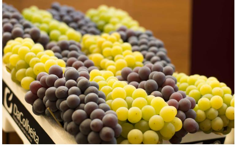 festa da uva, foto divulgação, namídia
