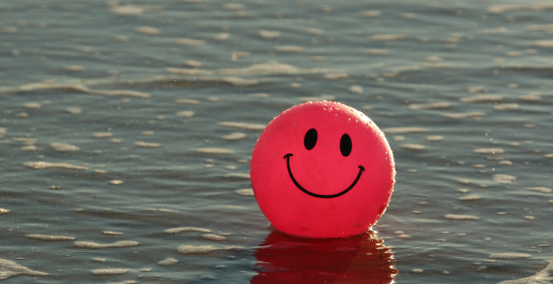 O sucesso vem mais rápido quando você é feliz!