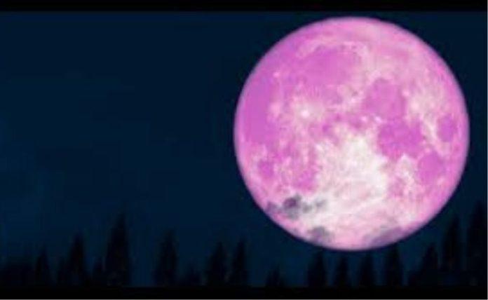 superlua rosa, foto divulgacao, r.malufC