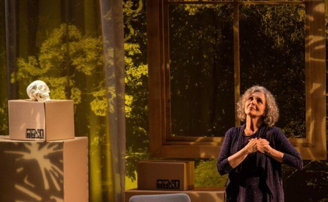 Irene Ravacheapresenta Alma Despejada de sua casa
