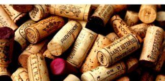 Como os vinhos importados chegam até sua casa