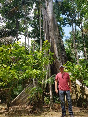 Como desenvolver a Amazônia e manter sua biodiversidade?